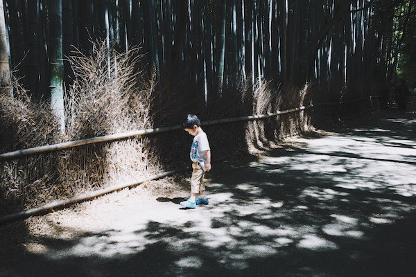 Image of little boy curious about his shadow in forest